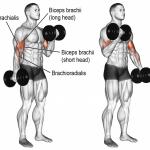 Corriger un point faible avec l'entraînement multi-angulaires: Les biceps