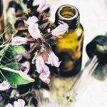 La phytothérapie, les bienfaits et les bénéfices des plantes