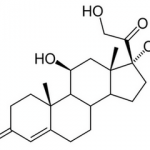 cortisol-catabolisme