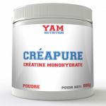 Quelques nouvelles fraîches de la recherche sur la créatine, la cyclocréatine...