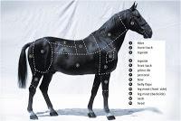 la-viande-de-cheval