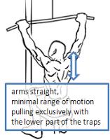Tirage barre poulie haute avec le bas des trapèzes