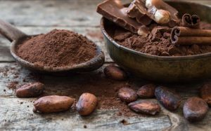 cacao-epicatechine-myostatine