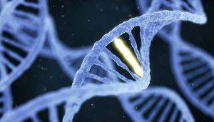 code-genetique
