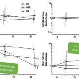 Modification des facteurs p21, MyoD, myostatine et MGF en fonction de l'intensité des exercices