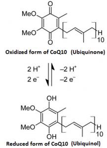 Ubiquinone et ubiquinole