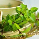2 tasses de thé vert augmenterait la présence de graisse brune