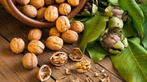 Les noix et leurs bienfaits sur la santé
