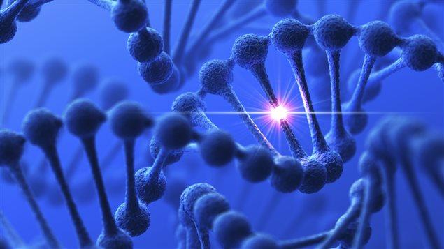 Génétique et nutrigénomique