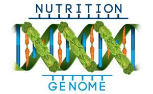 Nutrigénomique