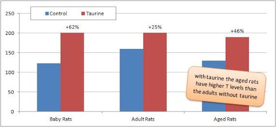 taurine-et-influence-sur-la-testosterone