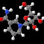 Vous dites ? Le Nicotinamide Riboside réduirait l'endurance des athlètes ?