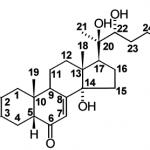 Des ecdystéroïdes modifiés présenteraient des effets anabolisants augmentés