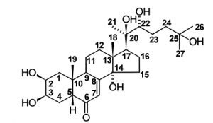 ecdysteroide-structure-moleculaire