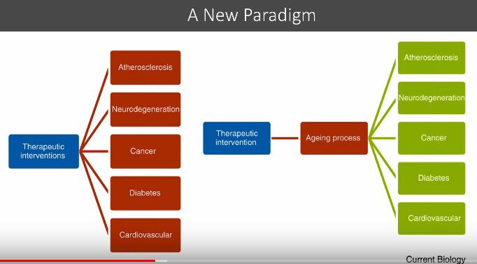 interventions-therapeutiques-nouveau-paradigme