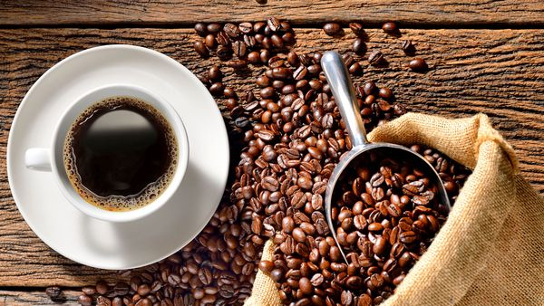 cafeine-carnitine
