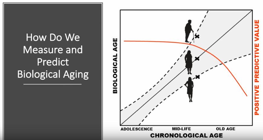 comment-mesurer-predire-l-age-biologique
