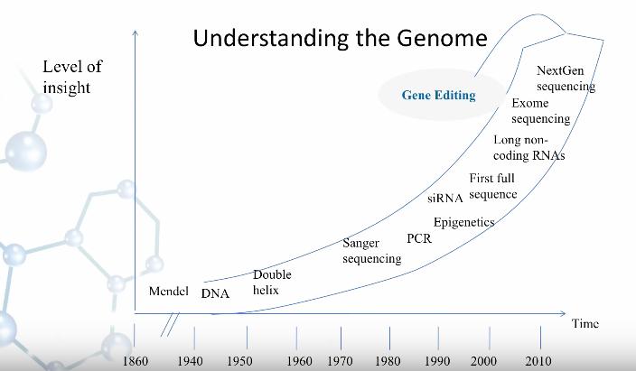 comprendre-genome