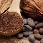 Le cacao, l'épicatéchine, l'endurance et vos mitochondries