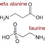 La bêta-alanine ferait suffoquer vos cardiomyocytes mais la Taurine les fait respirer à nouveau: la Taurine régule la synthèse des protéines et protège les mitochondries contre les radicaux libres superoxydes (SOD)