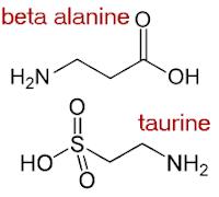 beta-alanine-taurine