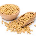 La protéine de soja améliore la santé de l'homme sans le rendre moins homme pour autant