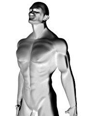 muscle-longevite