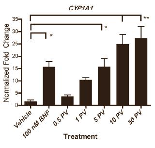 prunella-vulgaris-cyp1a1