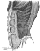 abdominaux-6-pack