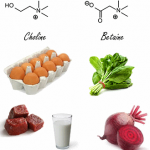 Plus de choline et de bétaïne, plus de muscle et moins de graisse